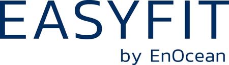 Easyfit Логотип